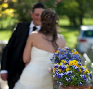 wedding planner ticino